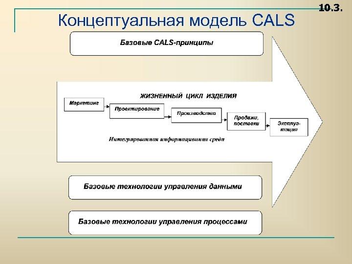 Концептуальная модель CALS 10. 3.