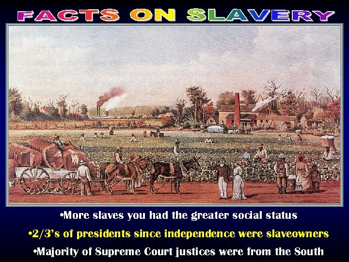 • More slaves you had the greater social status • 2/3's of presidents