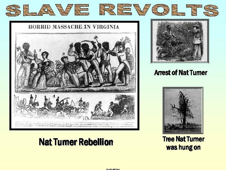 Arrest of Nat Turner Rebellion Slave Revolts/Turner Tree Nat Turner was hung on
