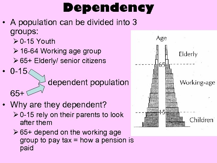 Dependency • A population can be divided into 3 groups: Ø 0 -15 Youth