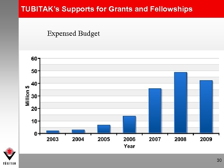 TUBITAK's Supports for Grants and Fellowships Expensed Budget 30