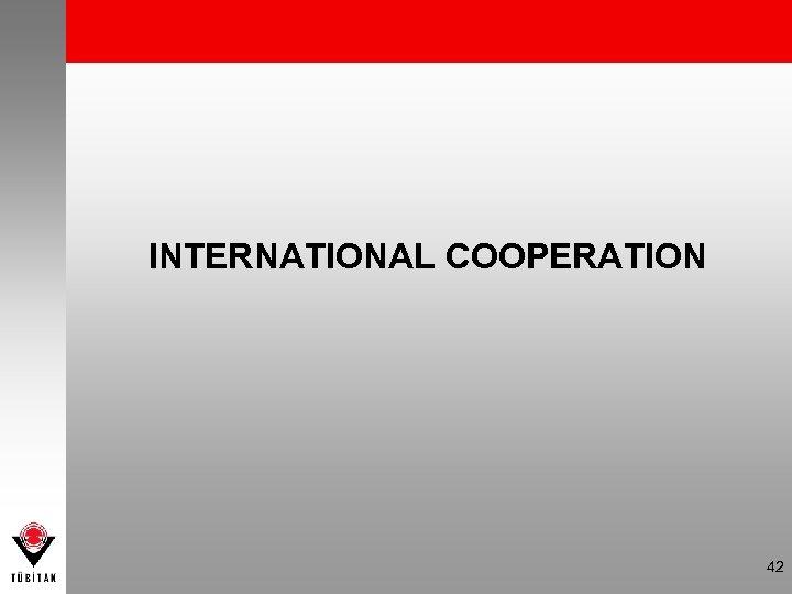 INTERNATIONAL COOPERATION 42