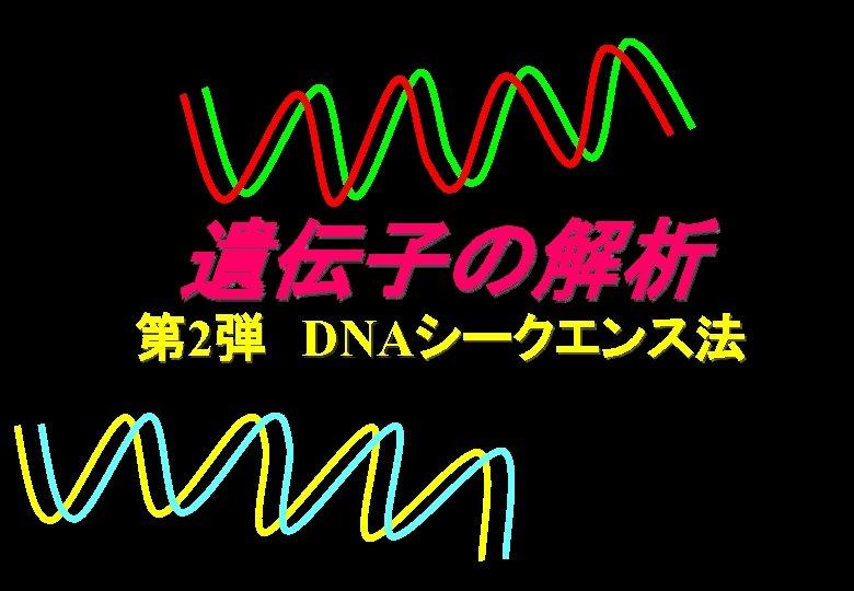 遺伝子の解析 第 2弾 DNAシークエンス法