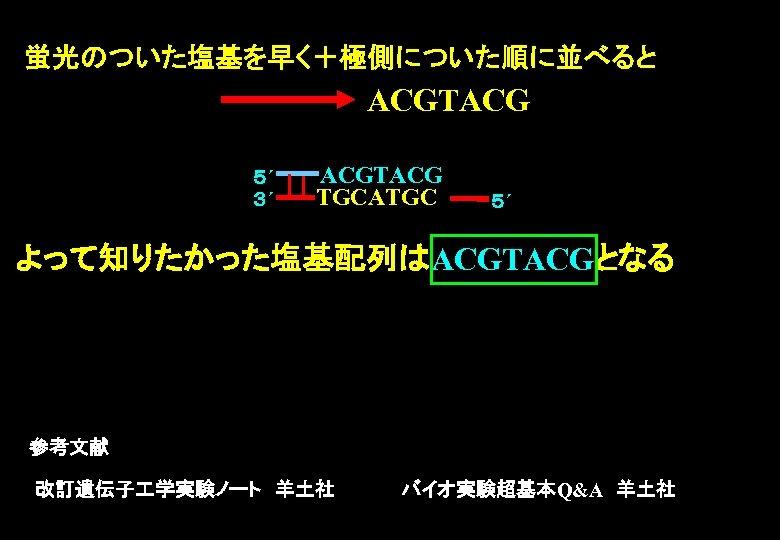 蛍光のついた塩基を早く+極側についた順に並べると ACGTACG 5´ 3´ ACGTACG TGCATGC 5´ よって知りたかった塩基配列はACGTACGとなる 参考文献 改訂遺伝子 学実験ノート 羊土社     バイオ実験超基本Q&A 羊土社