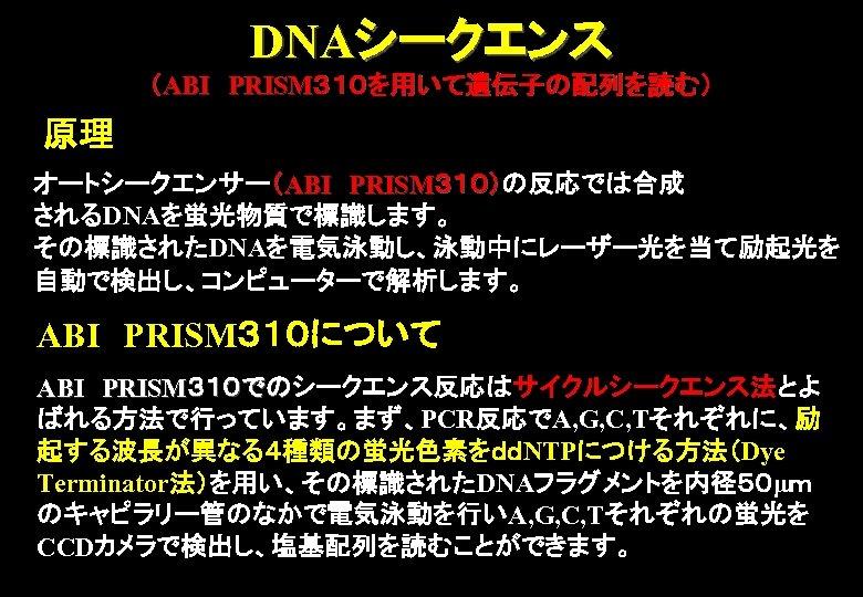DNAシークエンス (ABI PRISM310を用いて遺伝子の配列を読む) 原理 オートシークエンサー(ABI PRISM310)の反応では合成 310) されるDNAを蛍光物質で標識します。 その標識されたDNAを電気泳動し、泳動中にレーザー光を当て励起光を 自動で検出し、コンピューターで解析します。 ABI PRISM310について ABI PRISM310でのシークエンス反応はサイクルシークエンス法とよ での ばれる方法で行っています。まず、PCR反応でA, G, C,