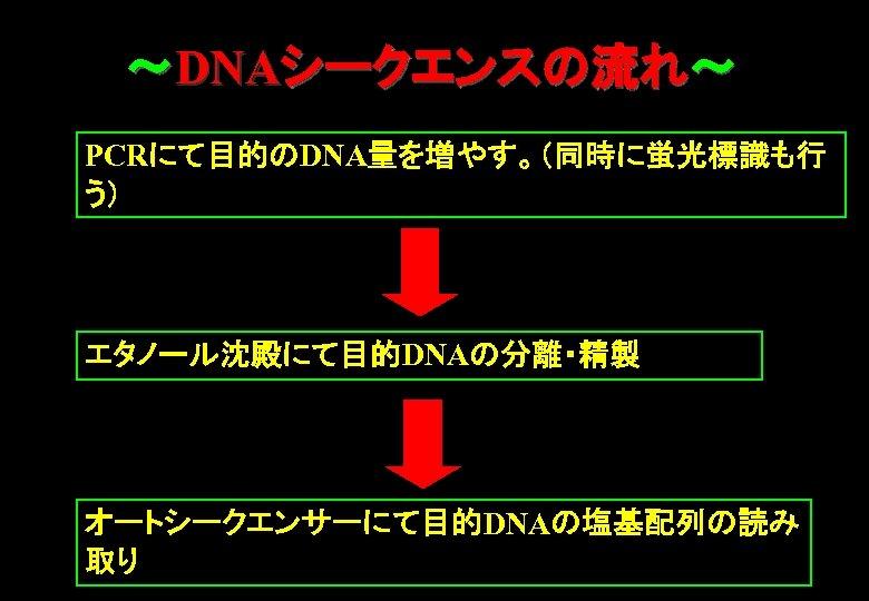 ~DNAシークエンスの流れ~ PCRにて目的のDNA量を増やす。(同時に蛍光標識も行 う) エタノール沈殿にて目的DNAの分離・精製 オートシークエンサーにて目的DNAの塩基配列の読み 取り