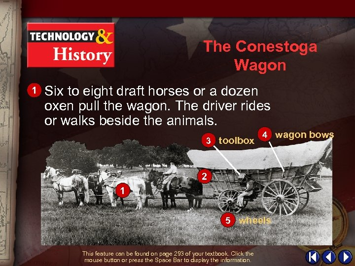 The Conestoga Wagon 1 Six to eight draft horses or a dozen oxen pull