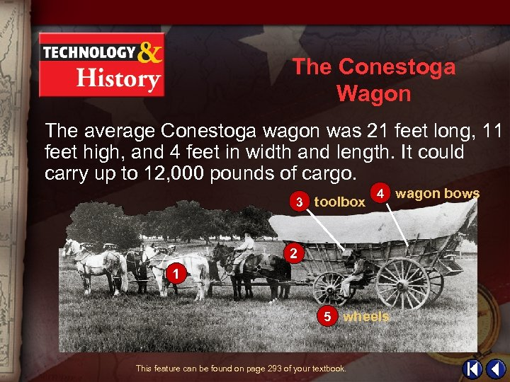 The Conestoga Wagon The average Conestoga wagon was 21 feet long, 11 feet high,