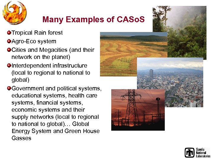 Many Examples of CASo. S Tropical Rain forest Agro-Eco system Cities and Megacities (and