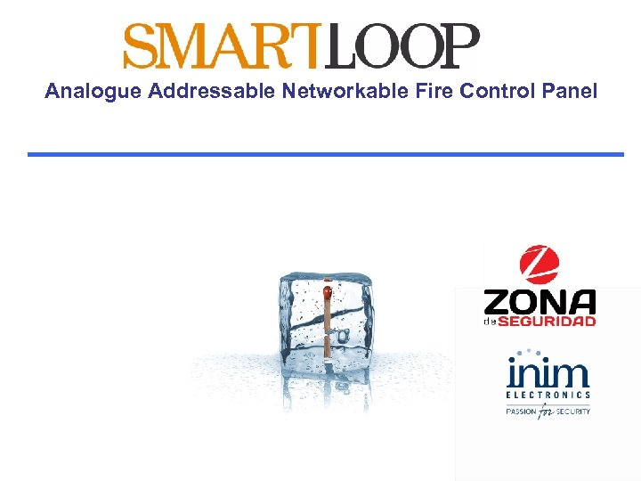 Analogue Addressable Networkable Fire Control Panel
