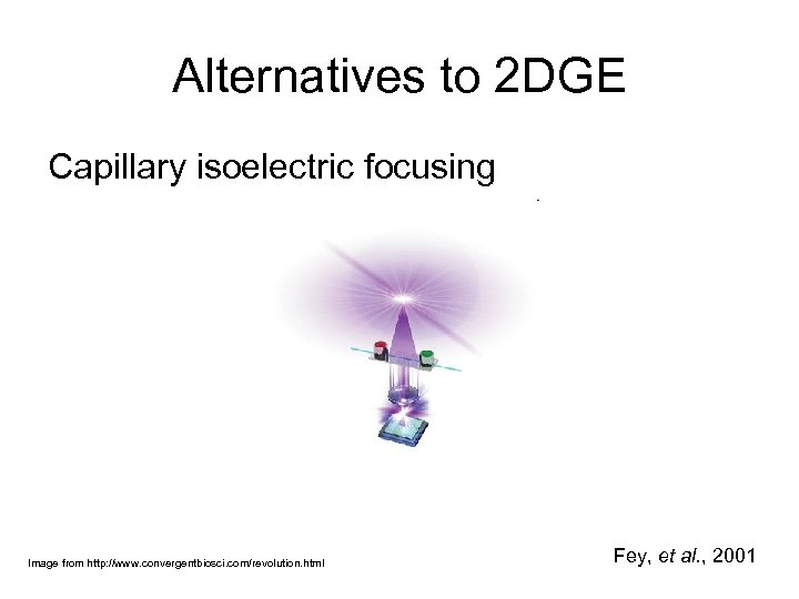 Alternatives to 2 DGE Capillary isoelectric focusing Image from http: //www. convergentbiosci. com/revolution. html