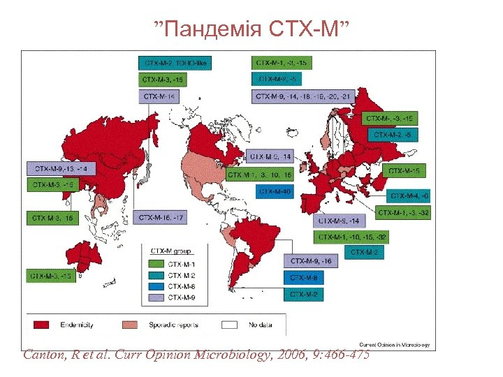 """""""Пандемія CTX-M"""" Canton, R et al. Curr Opinion Microbiology, 2006, 9: 466 -475"""