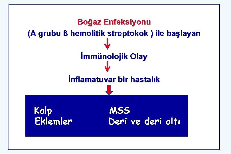 Boğaz Enfeksiyonu (A grubu ß hemolitik streptokok ) ile başlayan İmmünolojik Olay İnflamatuvar bir
