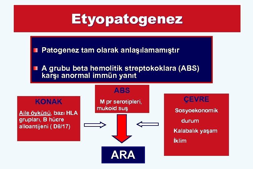 Etyopatogenez Patogenez tam olarak anlaşılamamıştır A grubu beta hemolitik streptokoklara (ABS) karşı anormal immün