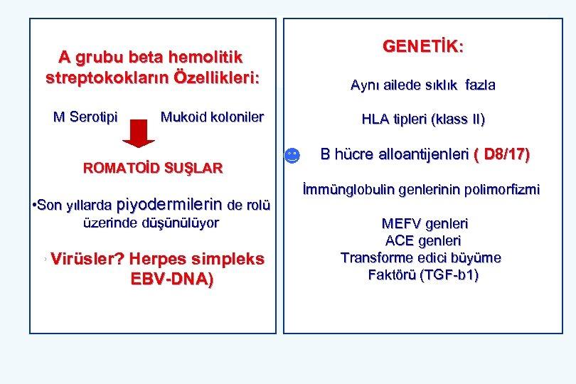 A grubu beta hemolitik streptokokların Özellikleri: M Serotipi Mukoid koloniler ROMATOİD SUŞLAR • Son