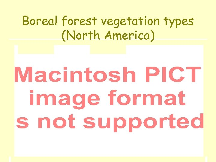 Boreal forest vegetation types (North America)