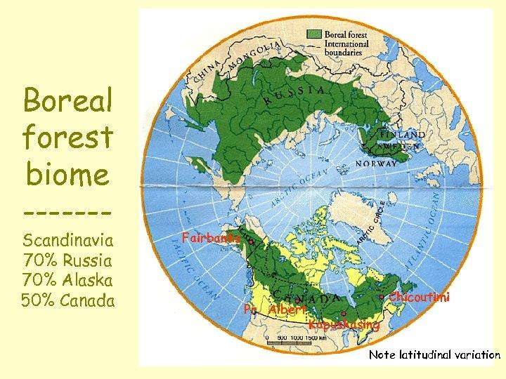 Boreal forest biome ------- Scandinavia 70% Russia 70% Alaska 50% Canada Fairbanks Pr. Albert