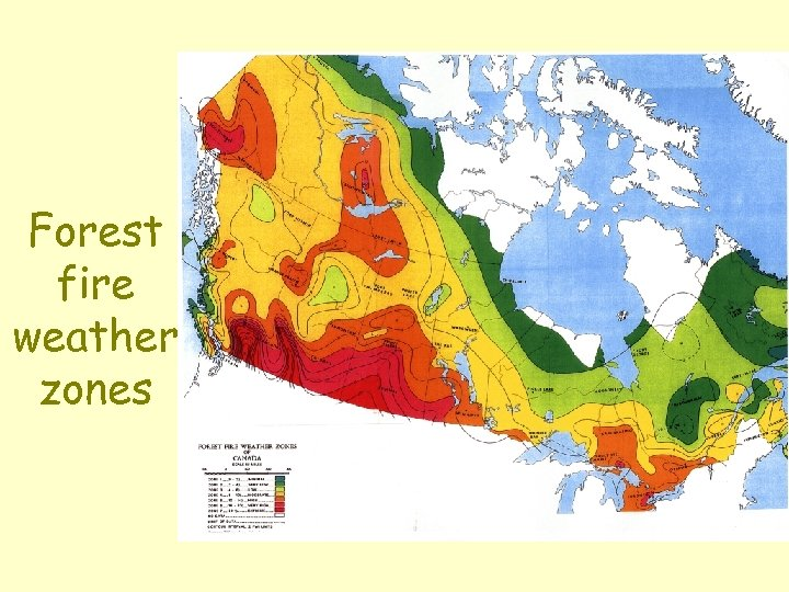 Forest fire weather zones