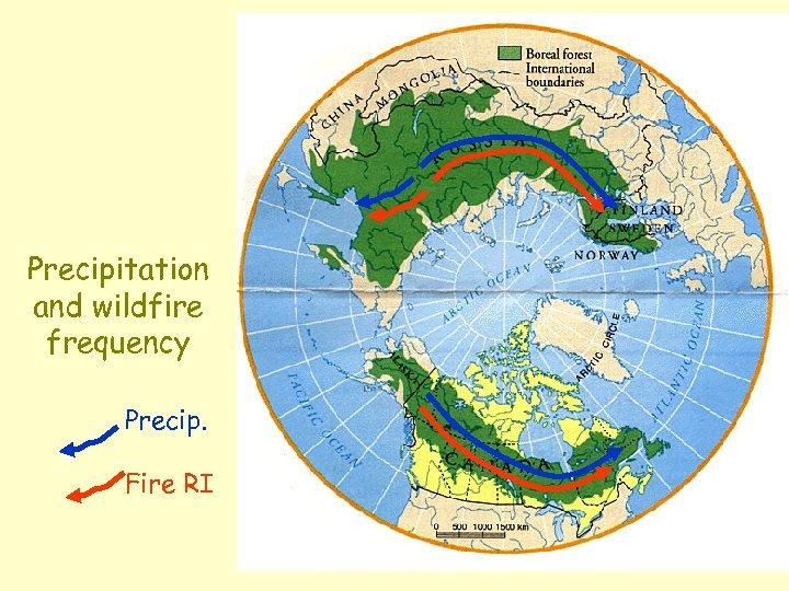 Precipitation and wildfire frequency Precip. Fire RI