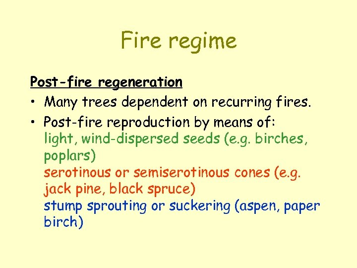 Fire regime Post-fire regeneration • Many trees dependent on recurring fires. • Post-fire reproduction