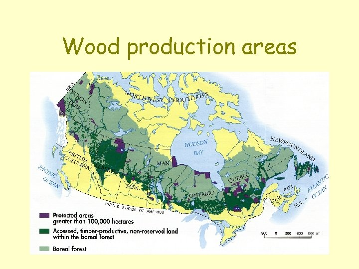 Wood production areas