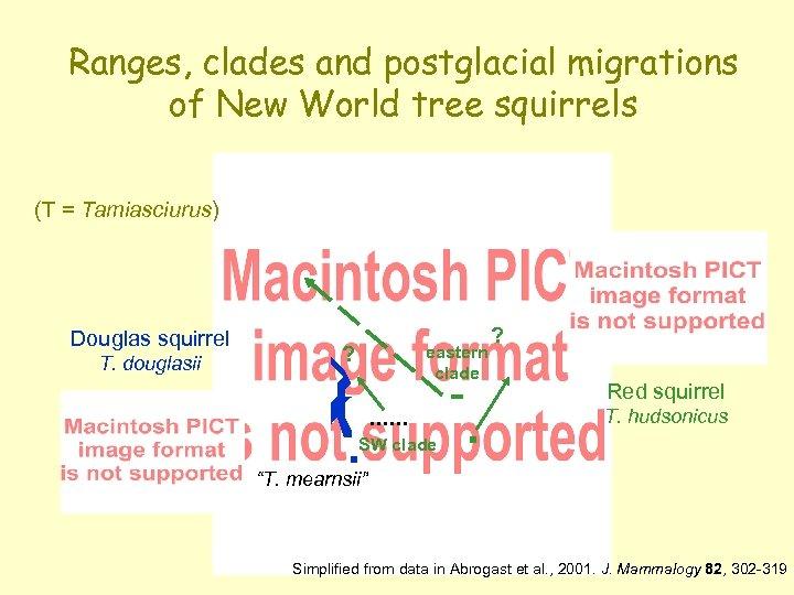 Ranges, clades and postglacial migrations of New World tree squirrels (T = Tamiasciurus) Douglas