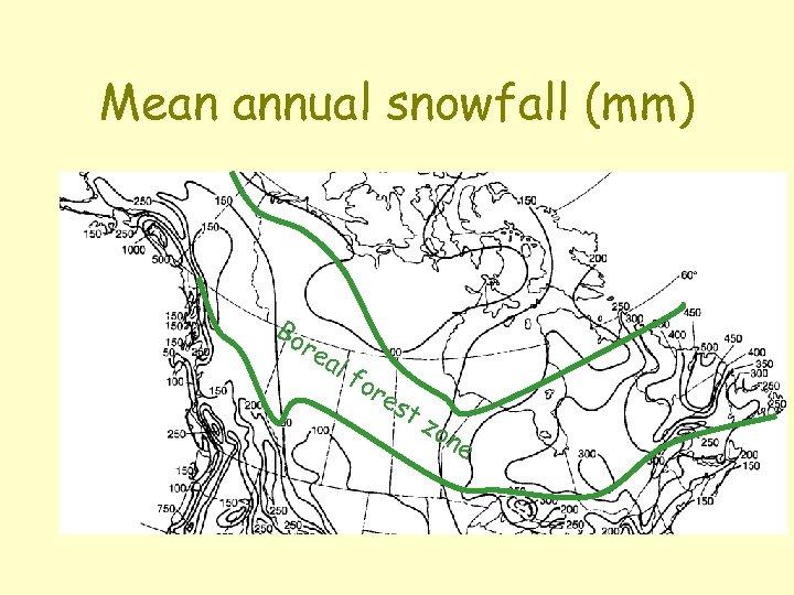 Mean annual snowfall (mm) Bo re al fo re st zo n e