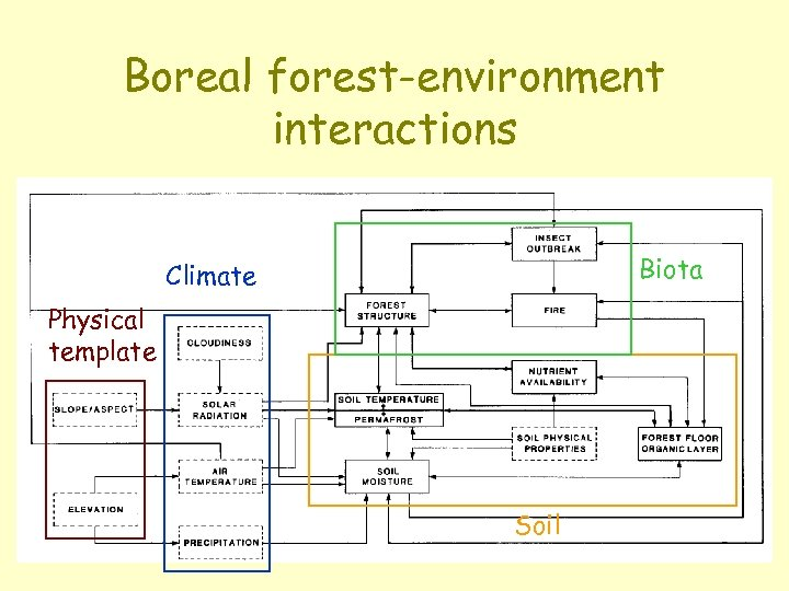 Boreal forest-environment interactions Biota Climate Physical template Soil