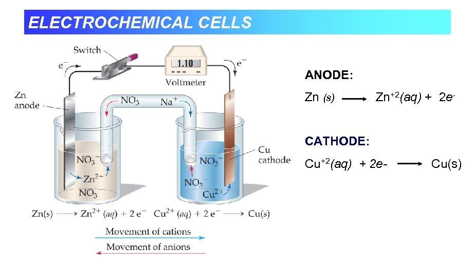 ELECTROCHEMICAL CELLS ANODE: Zn (s) Zn+2(aq) + 2 e- CATHODE: Cu+2(aq) + 2 e-