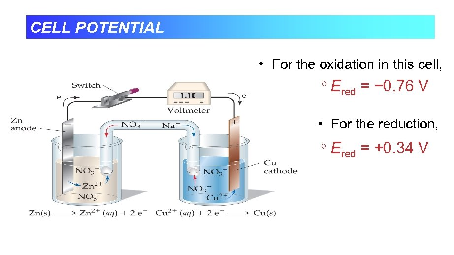 CELL POTENTIAL • For the oxidation in this cell, Ered = − 0. 76