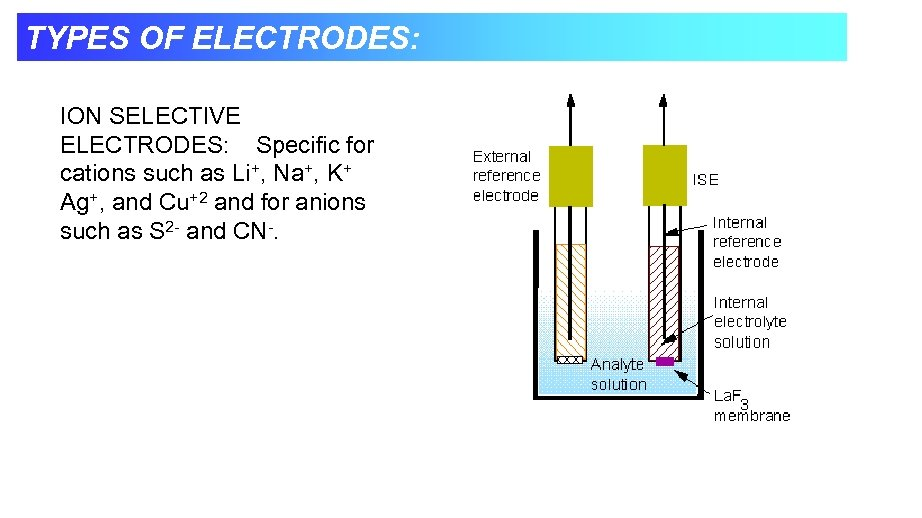 TYPES OF ELECTRODES: ION SELECTIVE ELECTRODES: Specific for cations such as Li+, Na+, K+