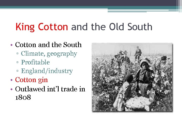 King Cotton and the Old South • Cotton and the South ▫ Climate, geography
