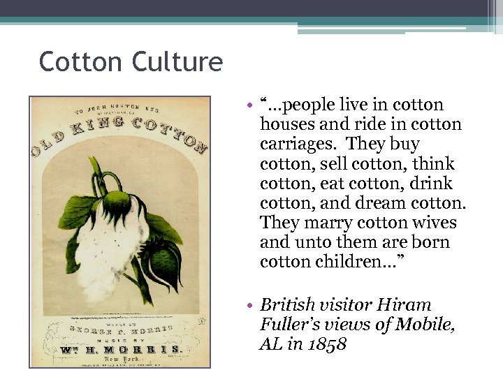 """Cotton Culture • """"…people live in cotton houses and ride in cotton carriages. They"""