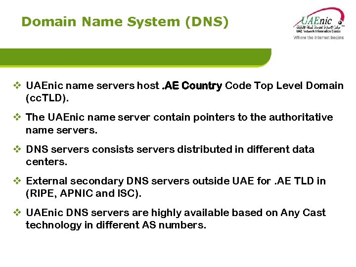Domain Name System (DNS) v UAEnic name servers host. AE Country Code Top Level