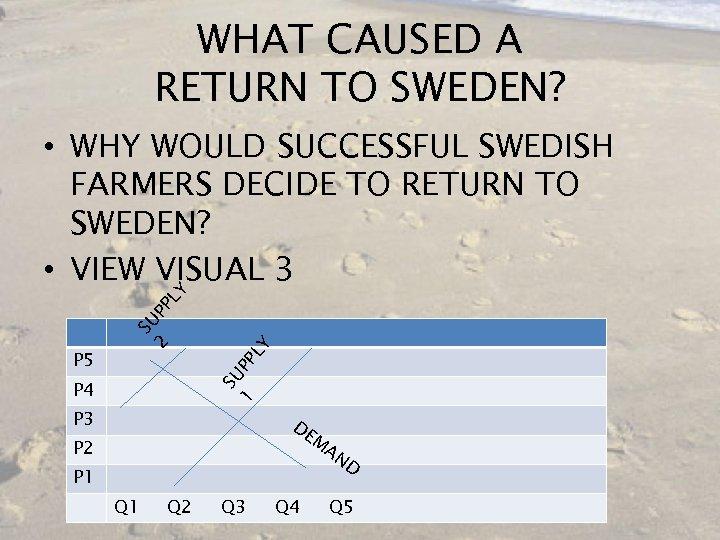 WHAT CAUSED A RETURN TO SWEDEN? PL Y SU P P 5 SU 2