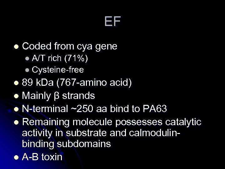 EF l Coded from cya gene l A/T rich (71%) l Cysteine-free 89 k.
