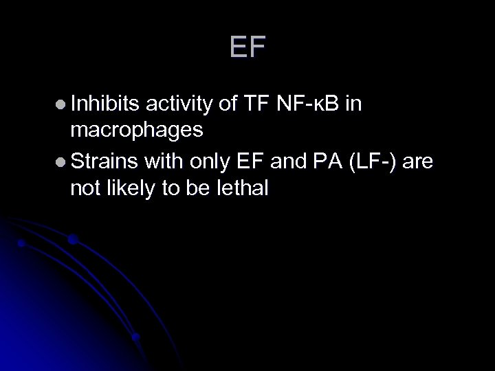 EF l Inhibits activity of TF NF-ĸB in macrophages l Strains with only EF