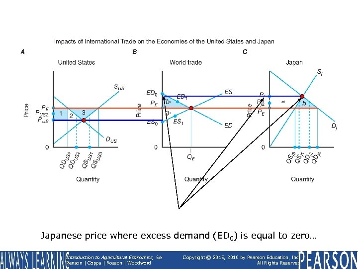 Japanese price where excess demand (ED 0) is equal to zero… Introduction to Agricultural