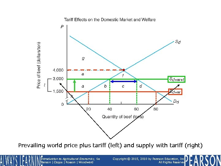 Prevailing world price plus tariff (left) and supply with tariff (right) Introduction to Agricultural