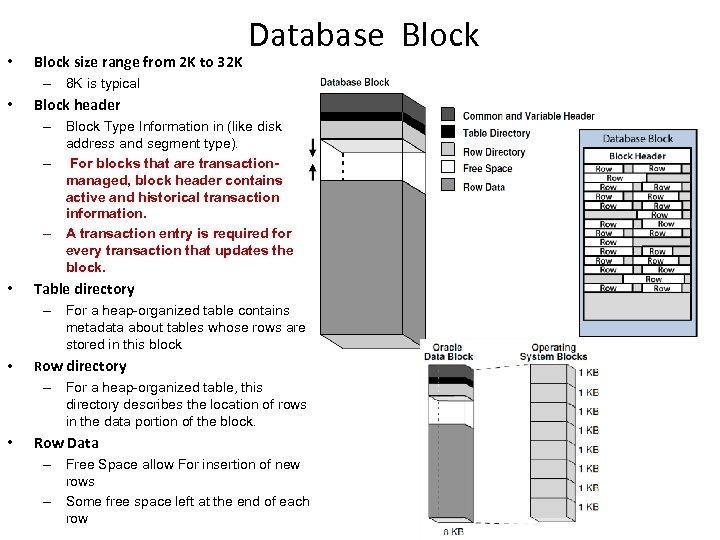 • Block size range from 2 K to 32 K Database Block –