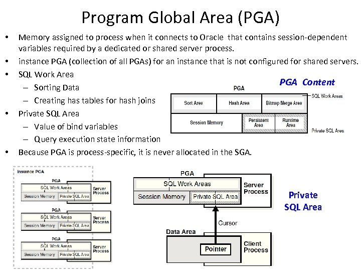 Program Global Area (PGA) • • • Memory assigned to process when it connects