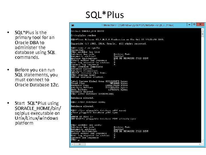 SQL*Plus • SQL*Plus is the primary tool for an Oracle DBA to administer the