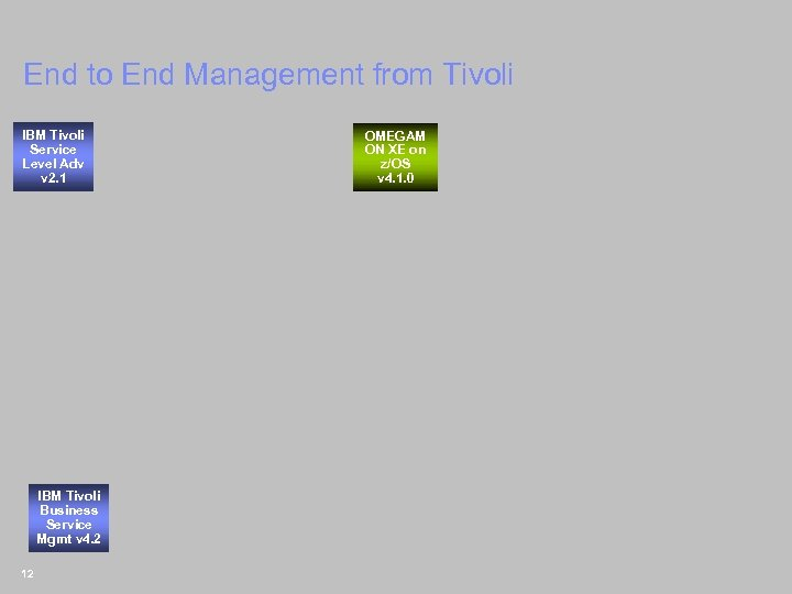 End to End Management from Tivoli IBM Tivoli Service Level Adv v 2. 1