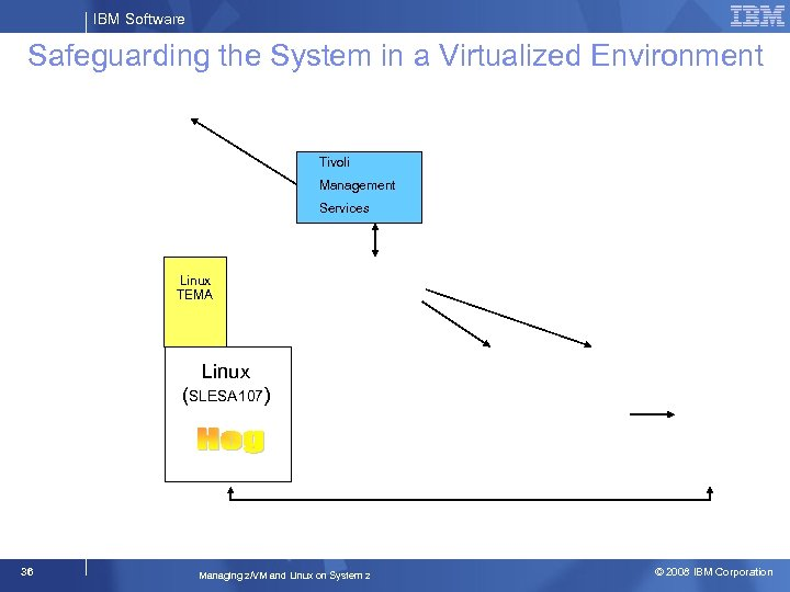 IBM Software Safeguarding the System in a Virtualized Environment Tivoli Management Services Linux TEMA