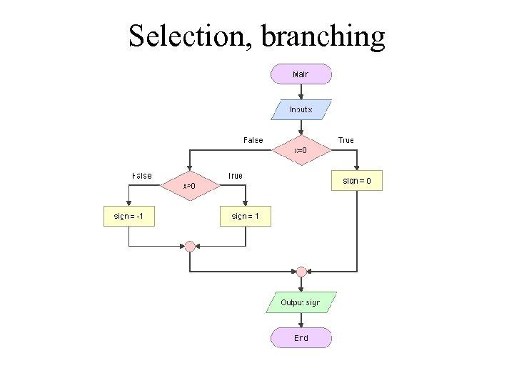 Selection, branching