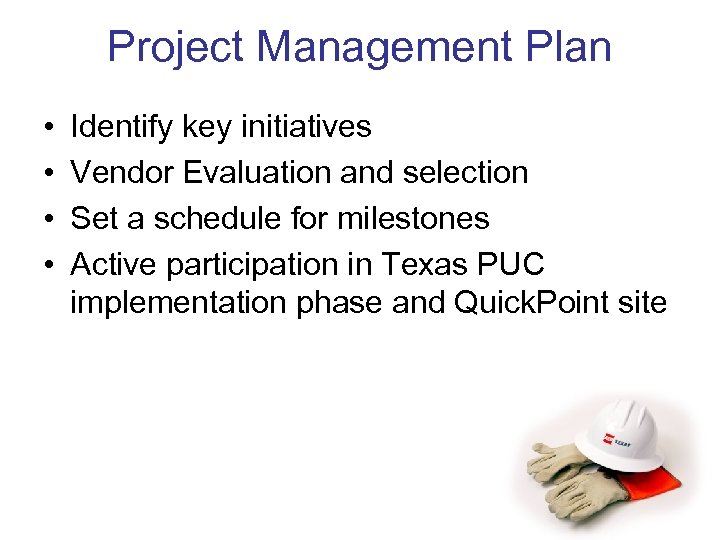 Project Management Plan • • Identify key initiatives Vendor Evaluation and selection Set a
