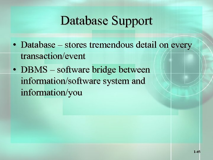 Database Support • Database – stores tremendous detail on every transaction/event • DBMS –