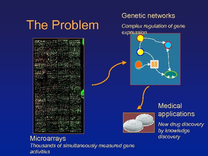The Problem Genetic networks Complex regulation of gene expression Medical applications Microarrays Thousands of