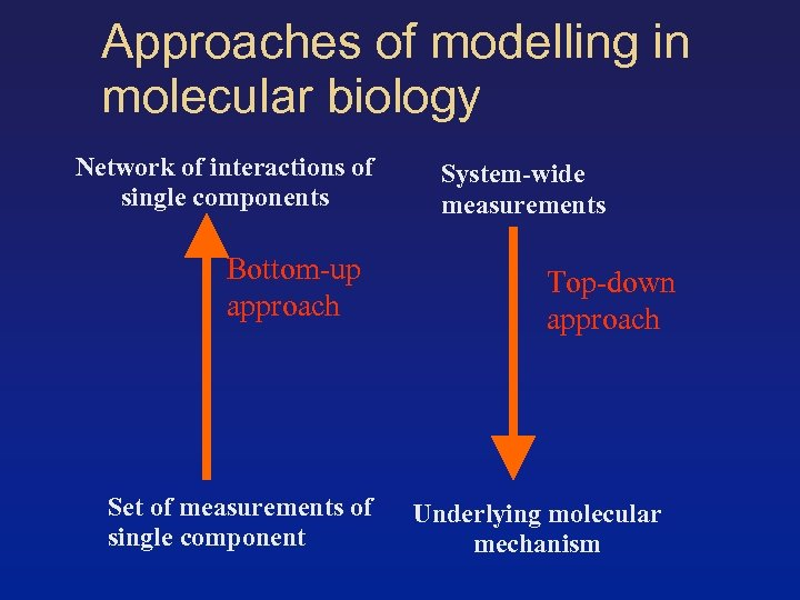 Approaches of modelling in molecular biology Network of interactions of single components Bottom-up approach