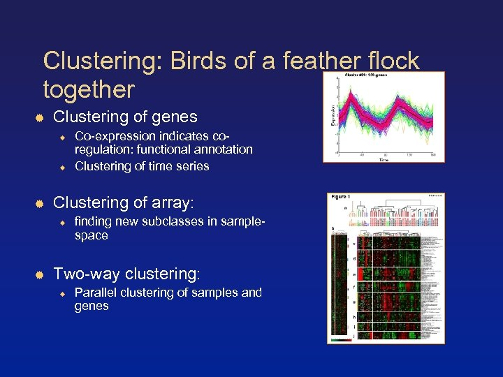 Clustering: Birds of a feather flock together Clustering of genes Clustering of array: Co-expression